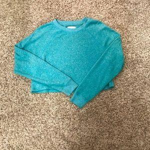 Cropped American Eagle Sweatshirt